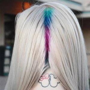 couleur de cheveux hidden rainbow roots été 2017