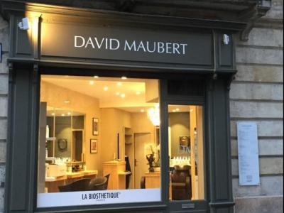 Coiffeur David Maubert voir le détail