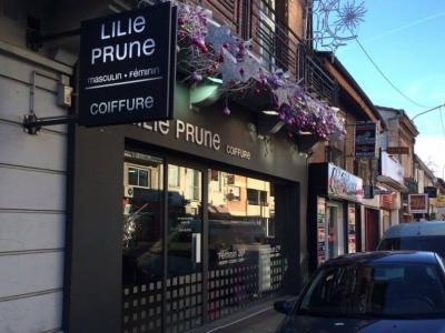 Coiffeur Lili Prune voir le détail