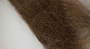 La mèche de cheveux de John Lennon